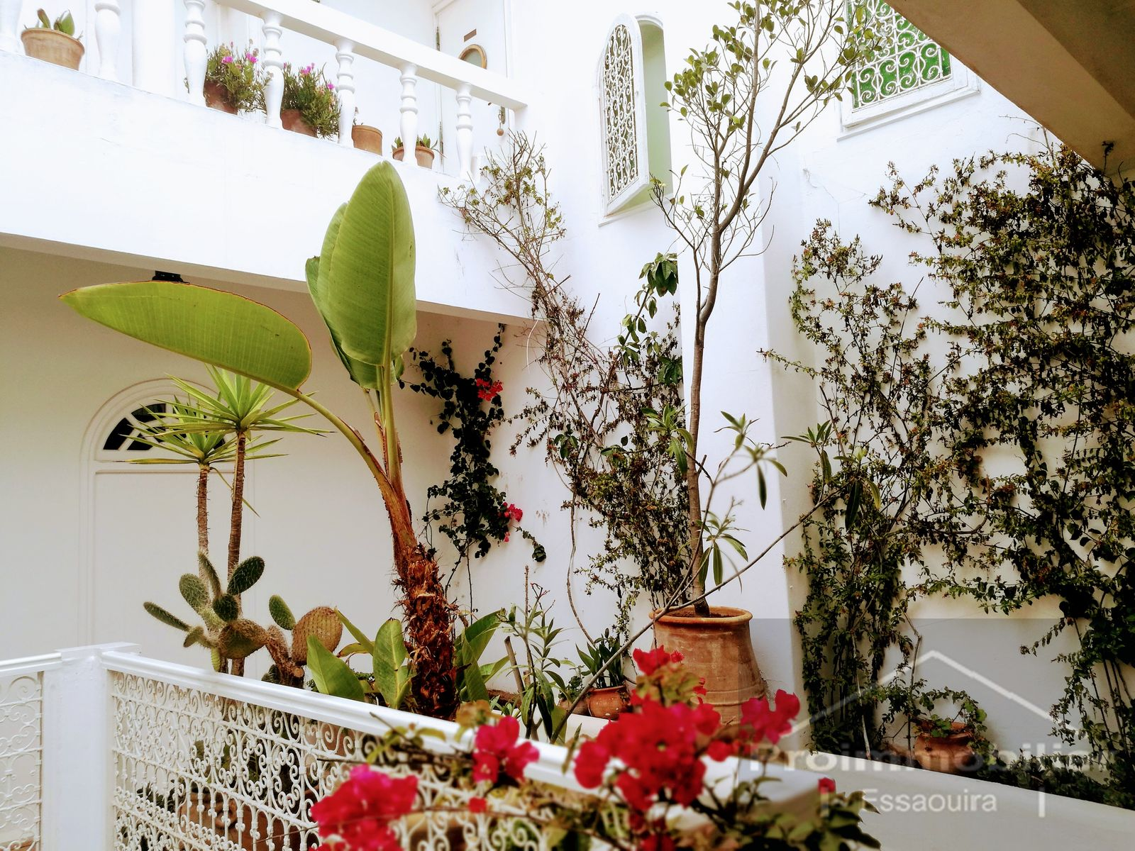 19-11-04-VR Authentic riad about 500 m² with sea view